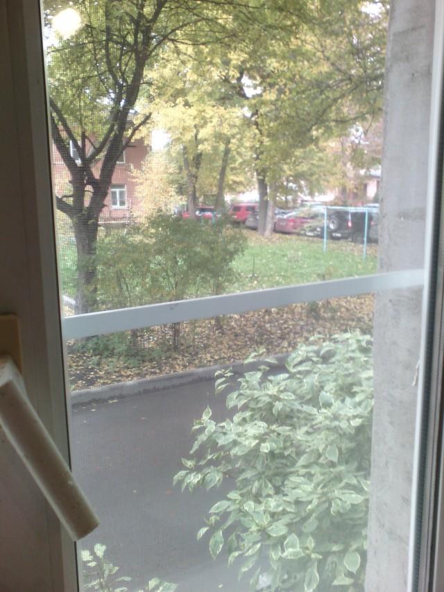 vid_iz_okna_kuhni_vo_dvor1-1